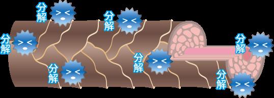 プラチナケアシャンプーで過酸化水素を分解!