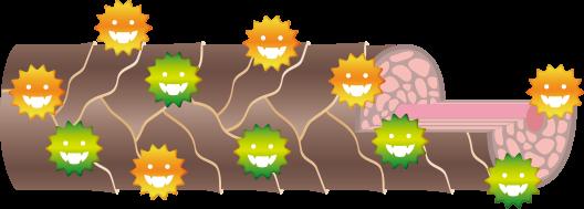カラーの場合はシステイン酸とニオイが発生